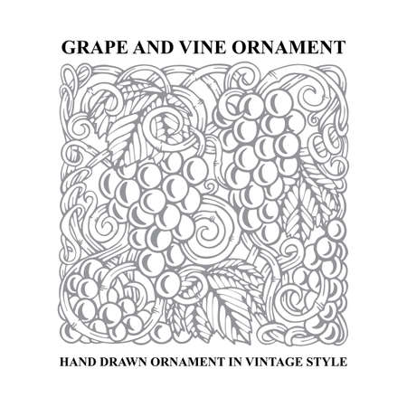 Grapes. Grape and vine engraving style hand drawn vector illustration. Grape and vine ornament. Part of set. 写真素材 - 151141086