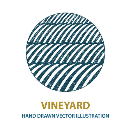 Vineyard. Sunny valley hand drawn illustration. Nature and meadows. Vineyard woodcut style sketch drawing. Landscape abstract background.