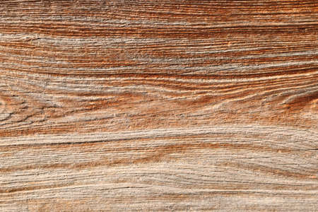 Wooden background. Natural wooden plank decorative textures.