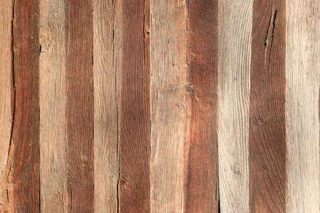 Old tree bark. Aged tree bark background texture. Stockfoto