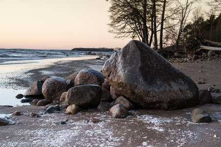 large rocks: Large rocks, covered with ice, on the shores of the Gulf of Finland in winter during sunset. Northern sea landscape in the cold season.