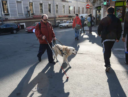 St. Petersburg, Russia - May 29, 2012: A blind man of 50 years during training walking around the city with the help of a guide dog breed Labrador on the main street. Sajtókép