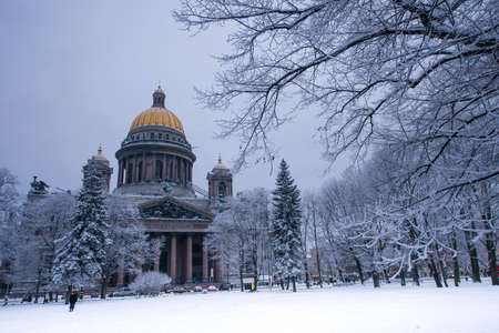 isaac s: St. Isaacs Cathedral in the winter night on a cold day. Trees in the snow and frost. Attraction of the city, St. Petersburg, Russia