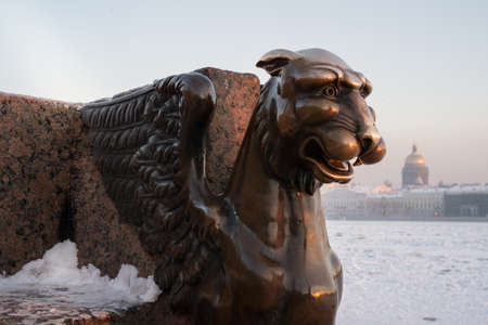 winged lion: Winged lion in winter on a cold day at the university embankment called Egyptian griffin on the background of the frozen Neva River and St. Isaacs Cathedral - a landmark of the city of St. Petersburg, Russia.