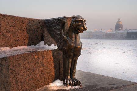 leon alado: león alado en invierno en un día frío en el terraplén universitaria llamada grifo egipcia en el fondo de la catedral y el río congelado de Neva de San Isaac - un símbolo de la ciudad de San Petersburgo, Rusia.