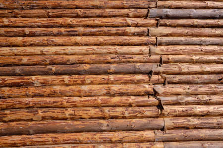 Neues Blockhaus aus Holz. Bau eines Hauses oder einer Wohnung. Wände aus runden behandelten Kiefernstämmen. Der Winkel der Struktur. Die Methode zum Verlegen von Protokollen. Standard-Bild