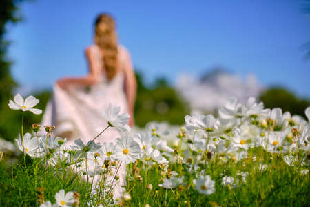 The girl and the guy are a couple, unrecognizable in a blur in the field of cosmos, bright green tones. Bright sunny day. Summer, beautiful scenery in wonderful weather. newlyweds, the bride and groom.