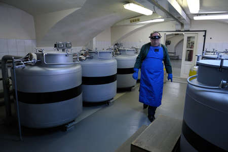 St. Petersburg, Russia - April 23, 2019: A method of storing plant breeding seeds at ultra-low temperatures created by liquid nitrogen. Worker for the performance of duties. Редакционное