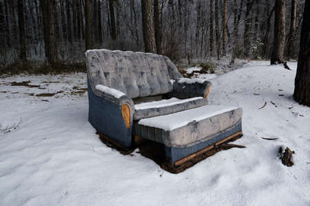 A dilapidated sofa covered in fresh snow in a pine forest. In an open form, blue, soft, a symbol of loneliness of abandonment, sadness, uselessness. Early winter, landscape of pine trees Фото со стока