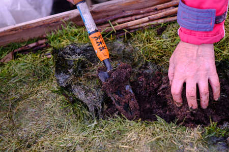 Compost pit, demonstration of the process of decay of finely chopped grass, preparation of fertilizer for the garden, summer Reklamní fotografie