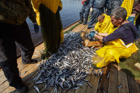 St. Petersburg, Russia - April 21, 2014: traditional spring fishing of smelt fish popular in the city. Fishermen, man boat, net, landing net, catch process
