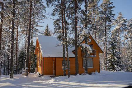 detached two-storey log cabin, with an attic, a beautiful house painted brown, surrounded by a winter coniferous forest, covered in snowdrifts.