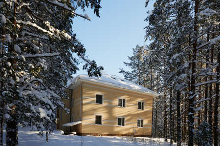 Large two-storey cottage surrounded by a winter pine forest, detached, around the snowdrifts, the road to the building, a clear sunny day.