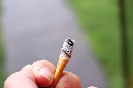 hand holding cigarette butt Stock Photo