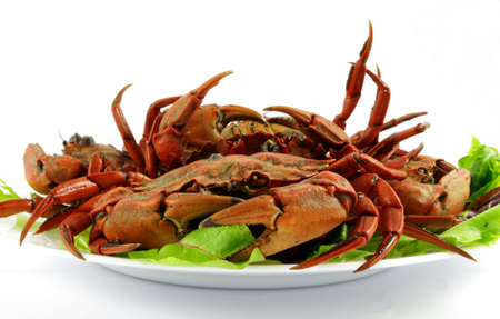 Close up of delicious cooked crabs on the plate