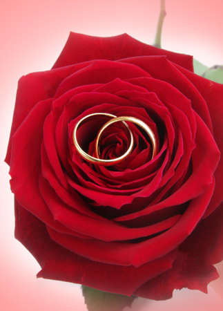 wedding rings with rose photo