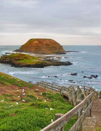 Beautiful australian coastline.Phillip Island. Hdr Shot photo