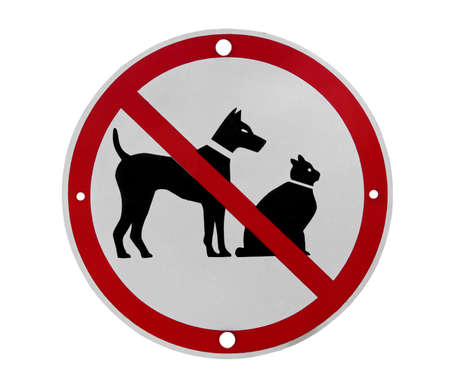 road sign saying no dogs or cats Stock Photo - 15931704