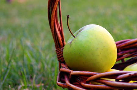 apple in basket on the nature.shallow DOF photo