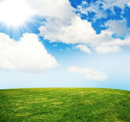 summer grass lawn with sky photo