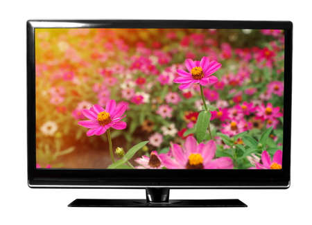flat screen monitor: tv with the flowers on white