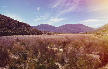 vintage look: australian countryside, vintage look