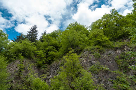 georgian: Beautiful Georgian landscape in summer. Georgia, Caucasus