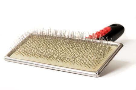Pet grooming tool on white,brush Banque d'images