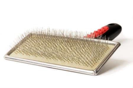 Pet grooming tool on white,brush 版權商用圖片