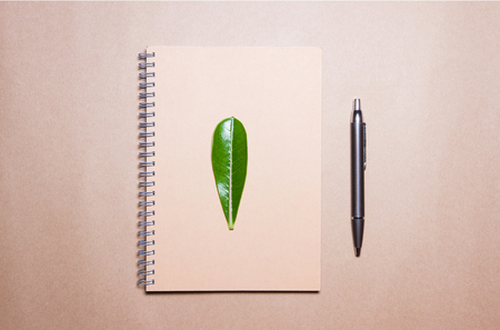 leaf on notebook and pen on a brown paper. View from above. 版權商用圖片