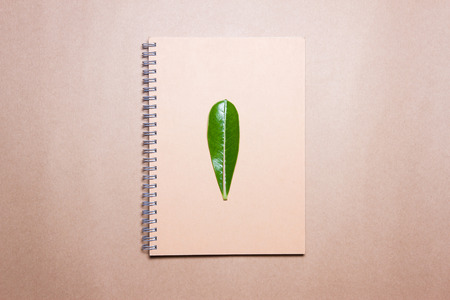 leaf on notebook on a brown paper. View from above.