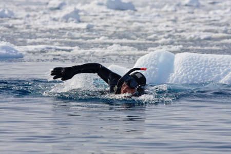 Diver among the ice against the blue iceberg. Antarctica Stock Photo
