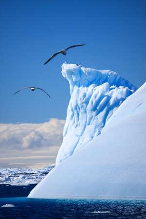 Antarctic iceberg in the snow Stock Photo - 8130669