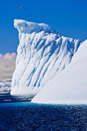 Antarctic iceberg in the snow Stock Photo - 8547736