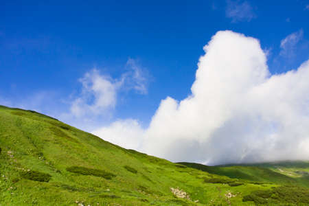Green meadow and blue sky with clouds Stock Photo - 8986894