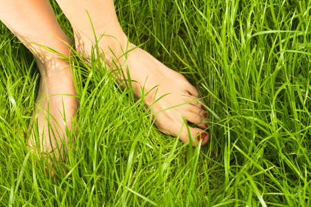 Womans bare feet in green photo