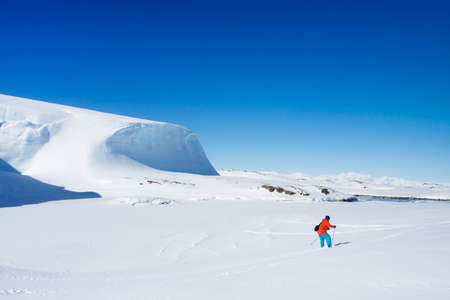 Man moves on skis. Glacier in background. Antarctica photo