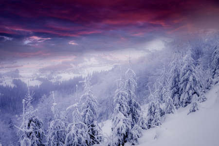 beautiful winter  scenery Stock Photo - 12389232