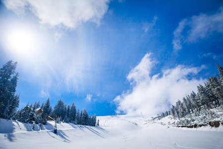 Slope on the skiing resort  in Carpathians  Ukraine photo