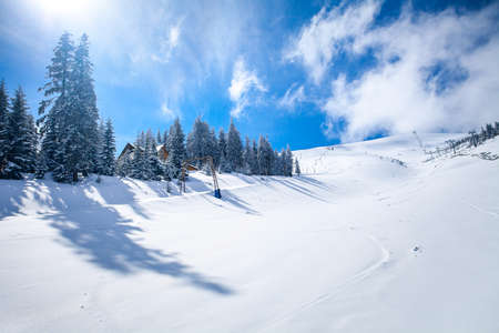 Slope on the skiing resort  in Carpathians. Ukraine photo