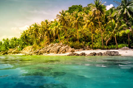 landscape of tropical island beach with perfect sky photo