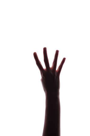 Female woman hand  isolated on the white photo
