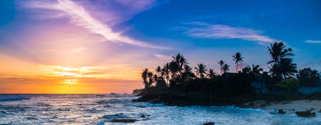 Extremely beautiful  sunset under the coconut plams on Sri Lanka beach.