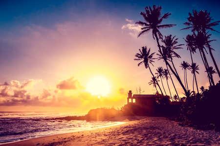 vacaciones en la playa: Extremadamente hermosa puesta de sol en la plams coco en Sri Lanka playa. Foto de archivo