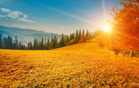 peaceful background: Colorful autumn landscape. Carpathian mountains, Ukraine, Europe. Stock Photo