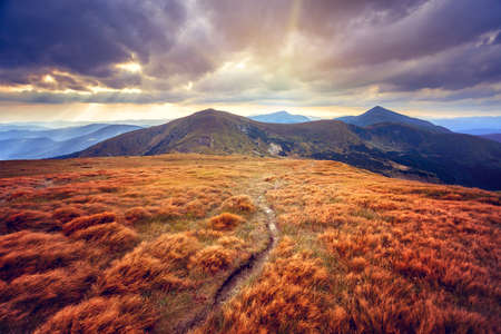 the biosphere: Mountain path in the Carpathian mountains. Panorama