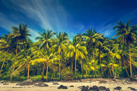 koh: Tropical sea and blue sky in Koh Samui, Thailand