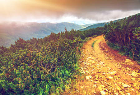 pathway: Trail leading through the mountain valley. Beauty world.