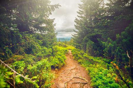 Chorna hora mountain range.  Carpathian mountains. Ukraine Stock Photo