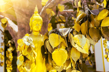 transcendental: Buddha statue with golden leaves in Thailand